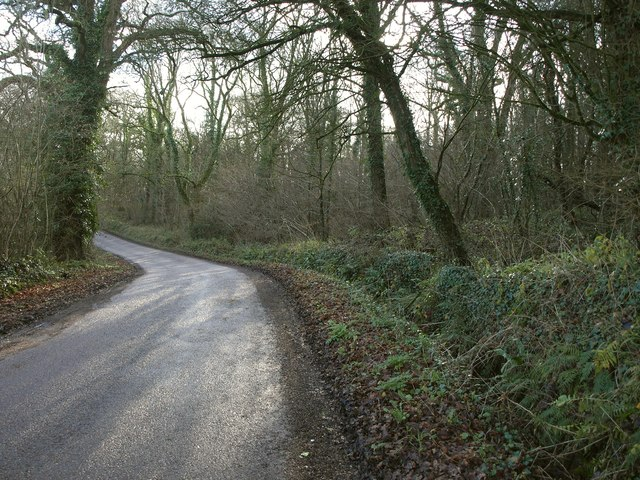 Road through Combe Wood