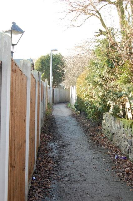 Path Rowan Tree Road to Field Lane