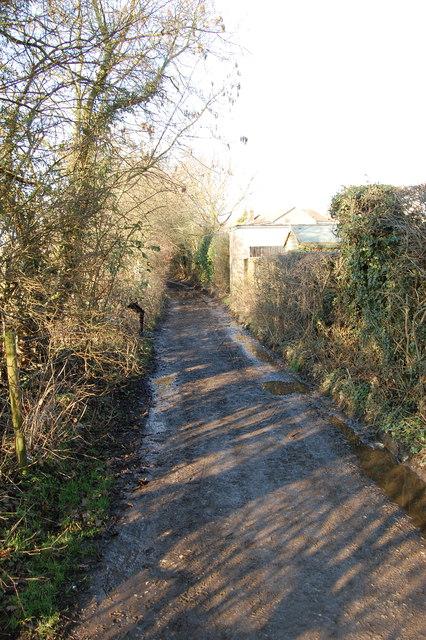 Field Lane