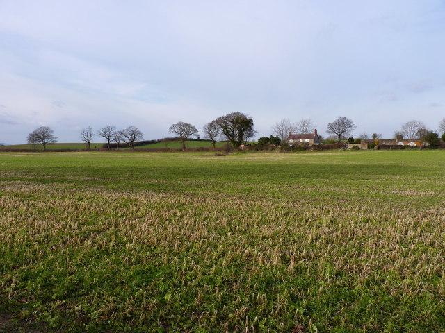 Stubble field north of Longden