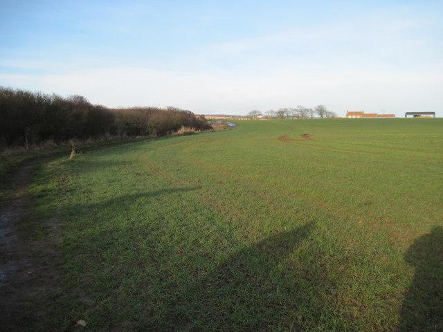 Field  toward  Cliff  Top  House  Farm