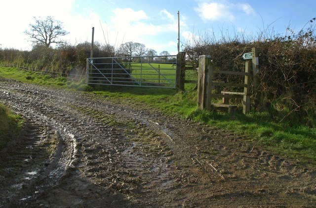 Footpath to Hill House