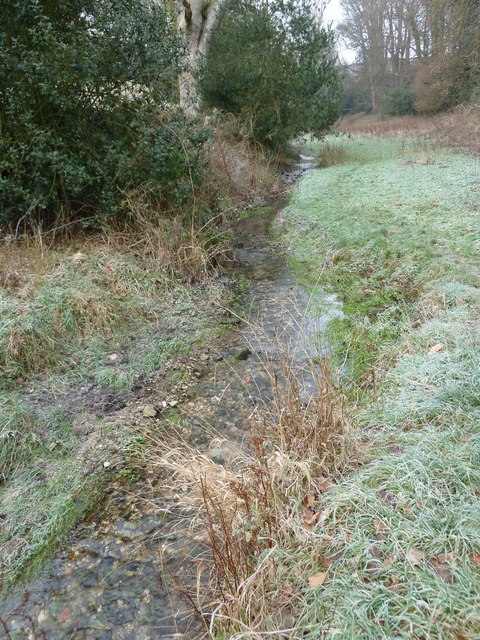 A chilly January morning near Oakhanger Stream (G)