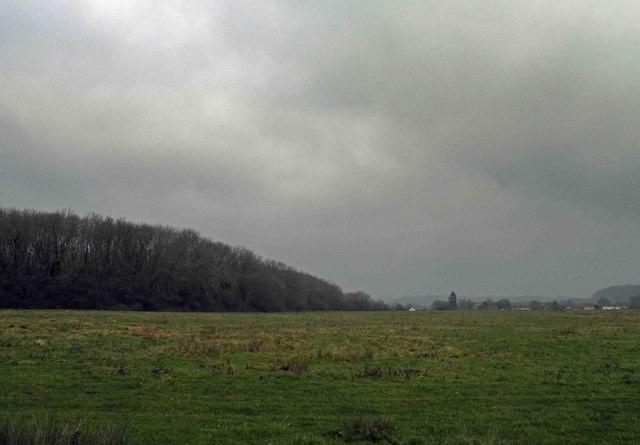 Inglestone Common