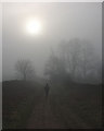 NY6140 : In the gloom by Karl and Ali
