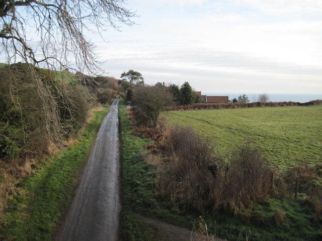 Hood  Lane  to  Sycarham  Farm