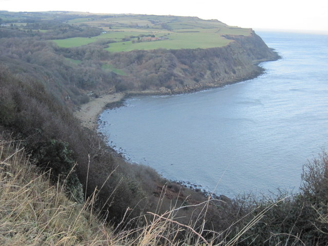 Hayburn  Wyke  from  Little  Cliff