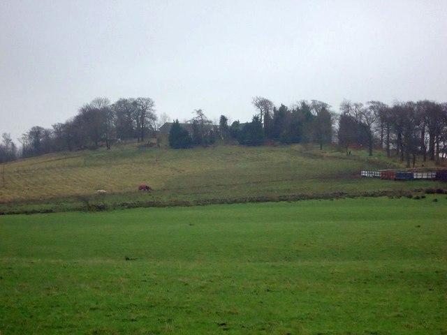 Bandominie Farm
