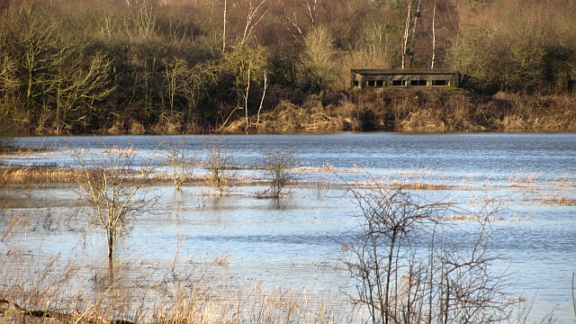 Baron's Haugh nature reserve