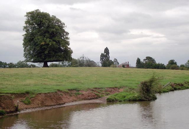 Canalside erosion near Burston, Staffordshire