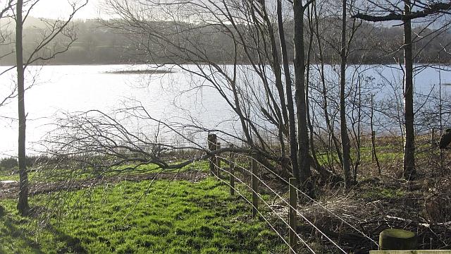 Baron's Haugh nature reserve