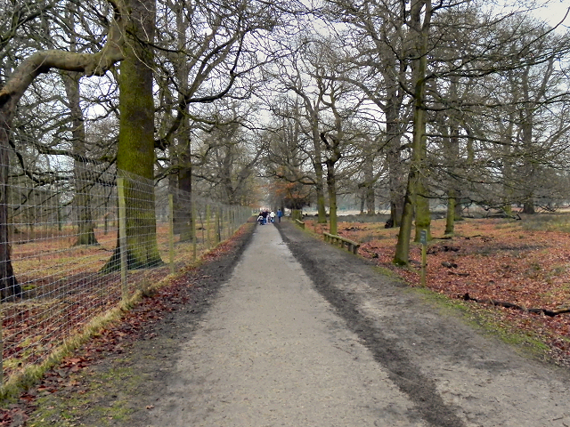 Dunham Park, South Avenue