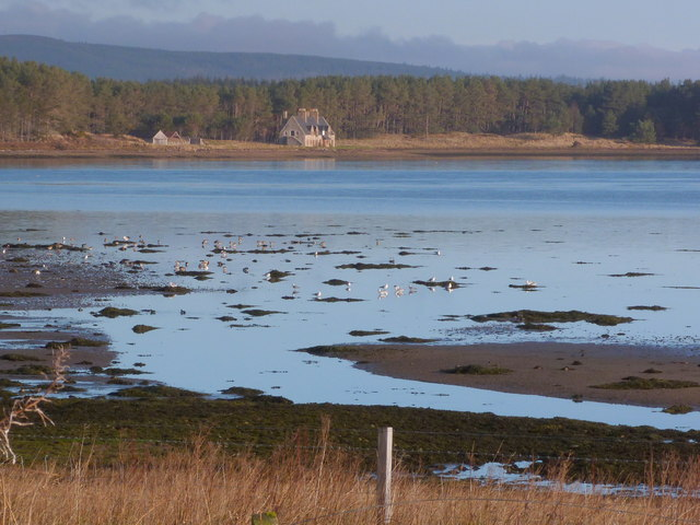 South shore of Loch Fleet