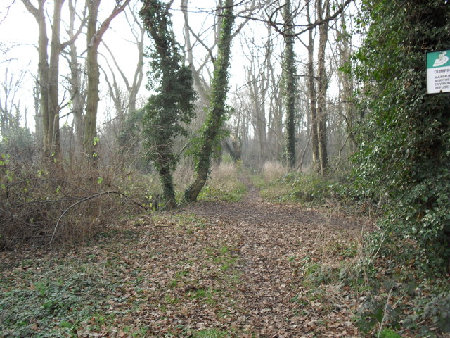 Pheasants Wood