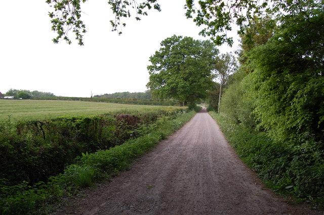 Burrows Lane Verwood Dorset