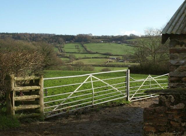 Gates and field, Shaugh Farm