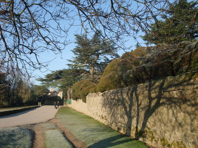 Cloud hedging on the boundary wall of Melbourne Hall