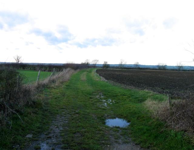 Fieldside track