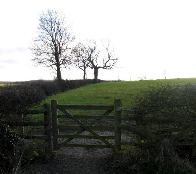 Towards Ashby Pastures