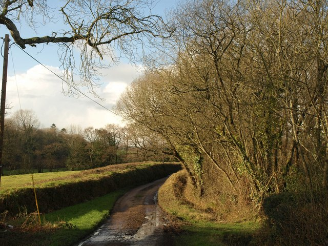 Lane to Chapelhayes