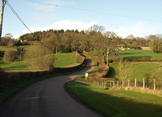 Road up Beacon Hill