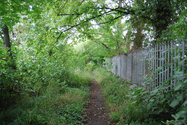 Path by the River Medway