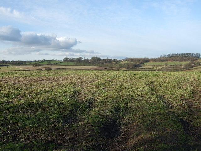 Farmland, Sandhills