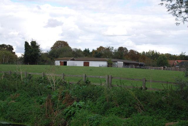 Meadows Farm