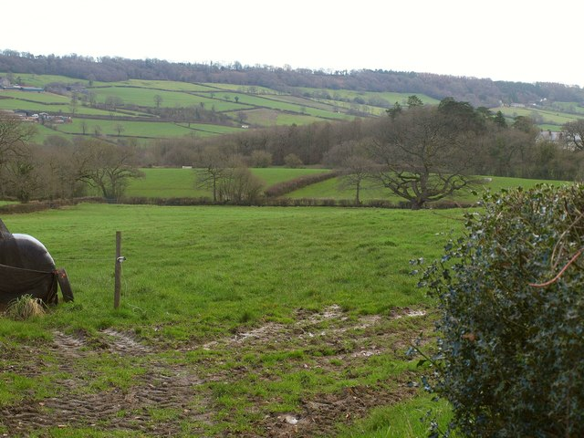 Pasture fields above the Otter