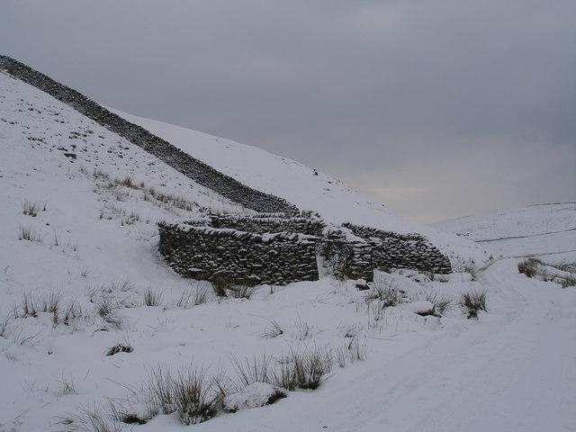 Sheepfold near Mossdale Scar