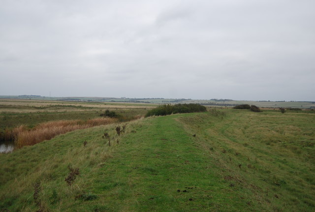 Curlews, Criminals and Contraband, Halstow Marshes