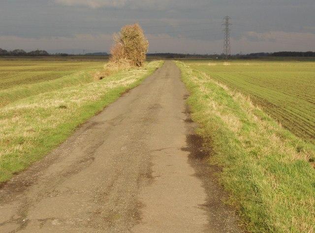 Sutton's Lane
