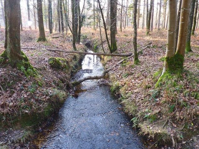 Small Stream near to Holmhill Inclosure