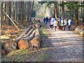 SU2608 : Walkers & Logs by Mike Smith