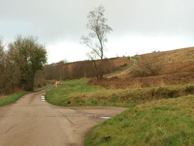 Hartridge Common