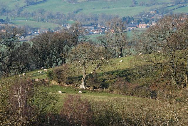 Farmland in Shropshire