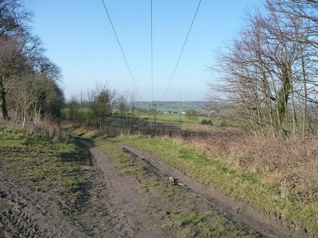 Farm access track dropping off Watchley Lane