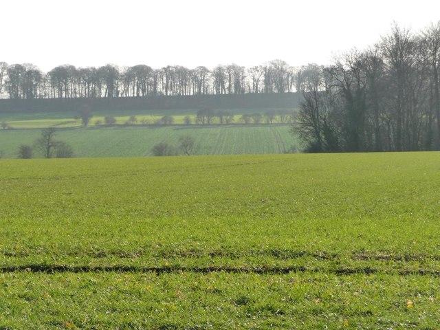Farmland east of Watchley Crag