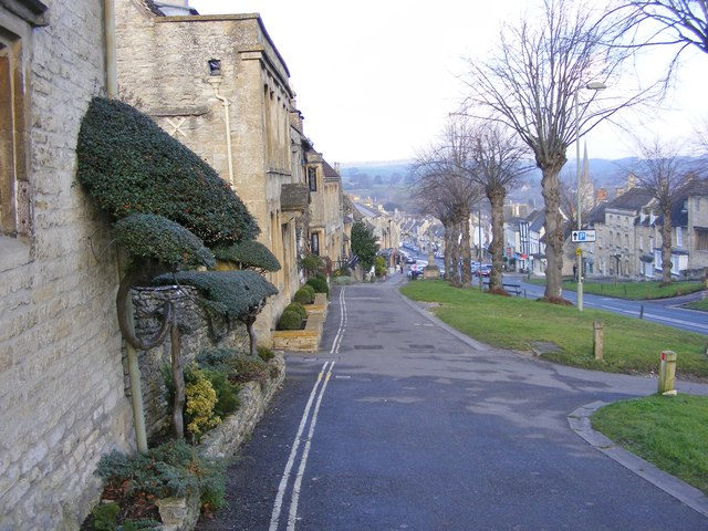 Burford Bushes