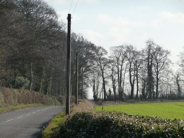 Bilham Lane
