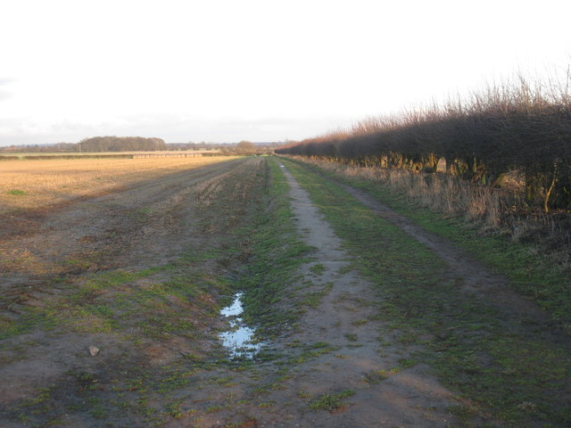 Track off Rugged Butts Lane