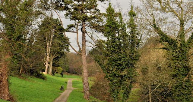 The Glen Park, Whiteabbey (1)