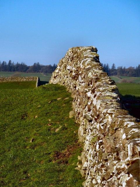Shoogly wall