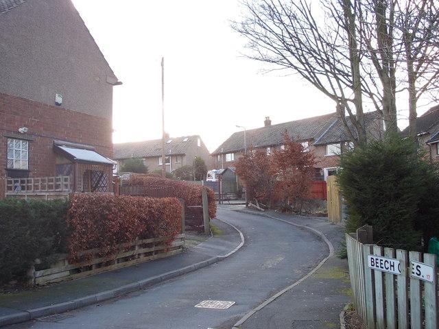 Beech Crescent - Glenwood Avenue