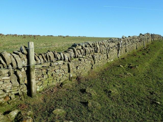 Dry-Stane Dyke on Knockbrake