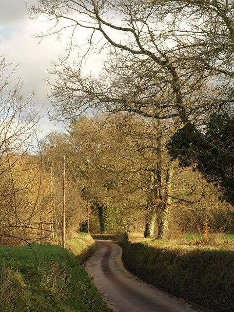 Road past Glebe Park