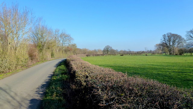 Low-lying land and lane at Letton