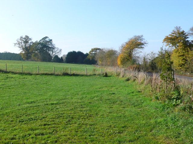 Track near Henbury