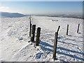 NT0630 : Fence junction, Birnies Bowrock by Richard Webb