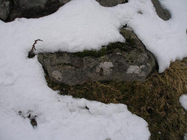 Pivot benchmark on a rock on Bare House Lane
